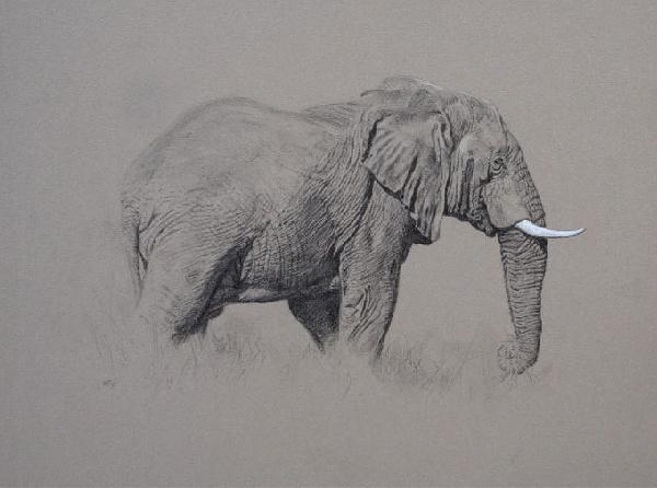 African Wildlife Paintings/Art Big Game Paintings/Art African Big Game Hunting Paintings/Art/Images Hunting Paintings/Art